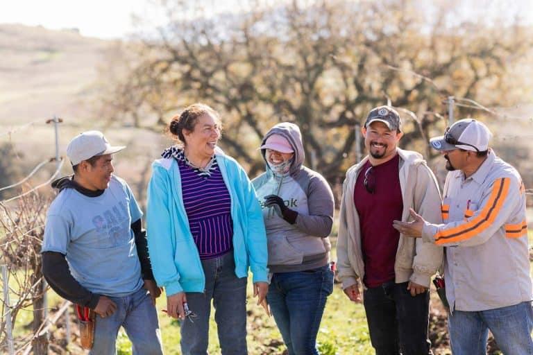 Vineyard Farmworkers